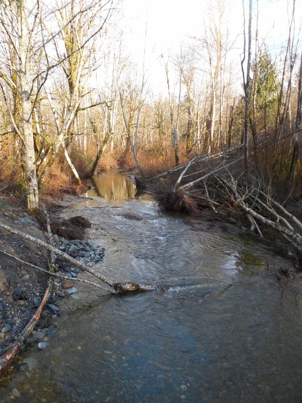 d780213d8b7e Cumberland Creek Tour and Planting
