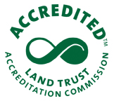 accreditation seal_green.jpg