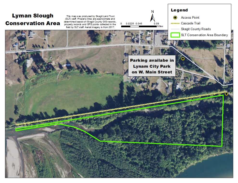 GIS map of Lyman Slough Conservation Area. Map credit: Skagit Land Trust staff.