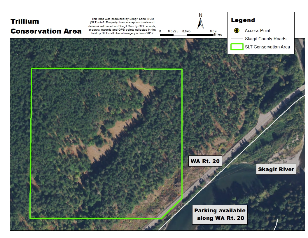 Aerial map of Trillium Conservation Area. Map created by Skagit Land Trust staff.