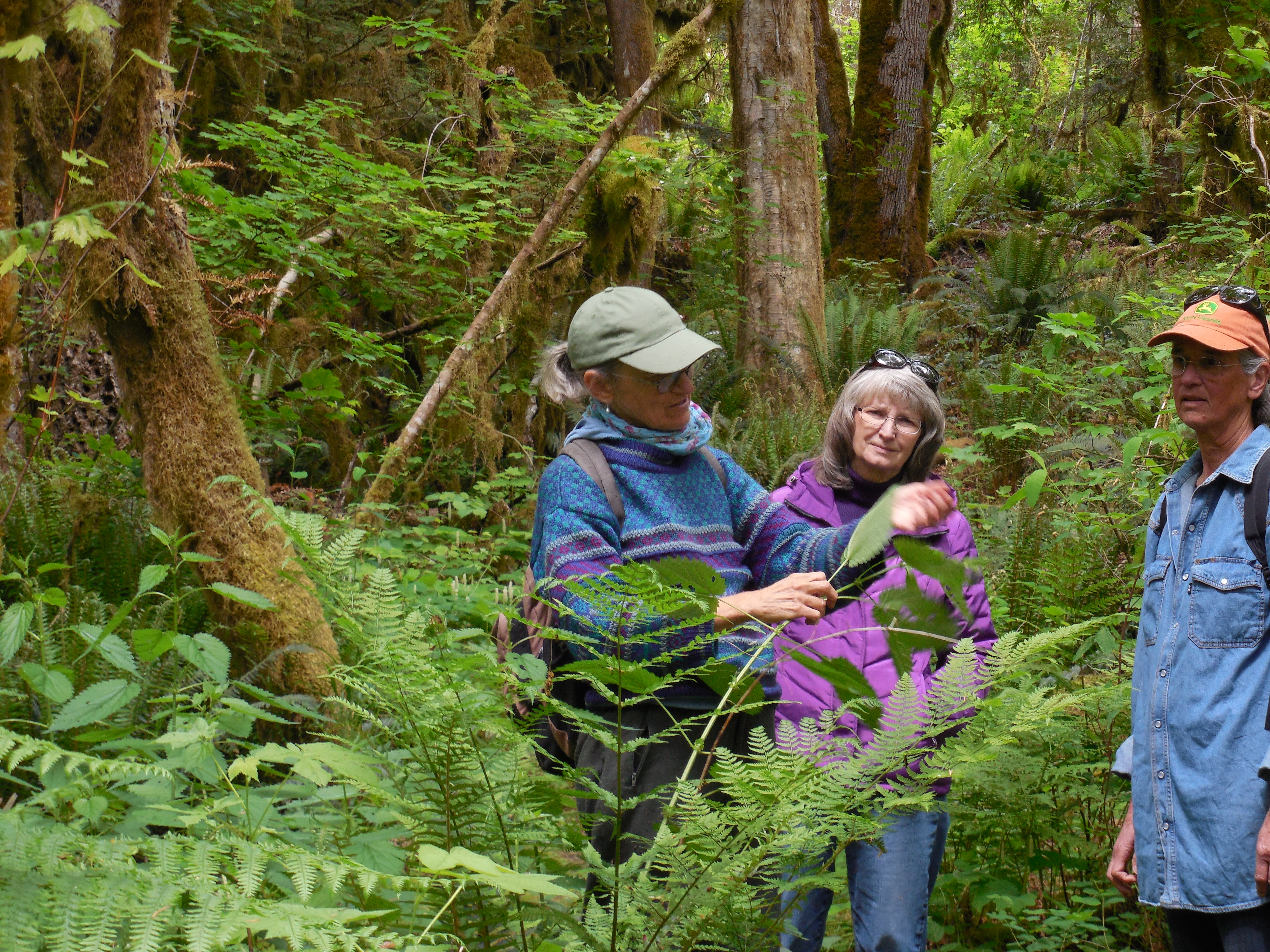 Native plant walk, May 2015. Photograph credit: Skagit Land Trust staff.
