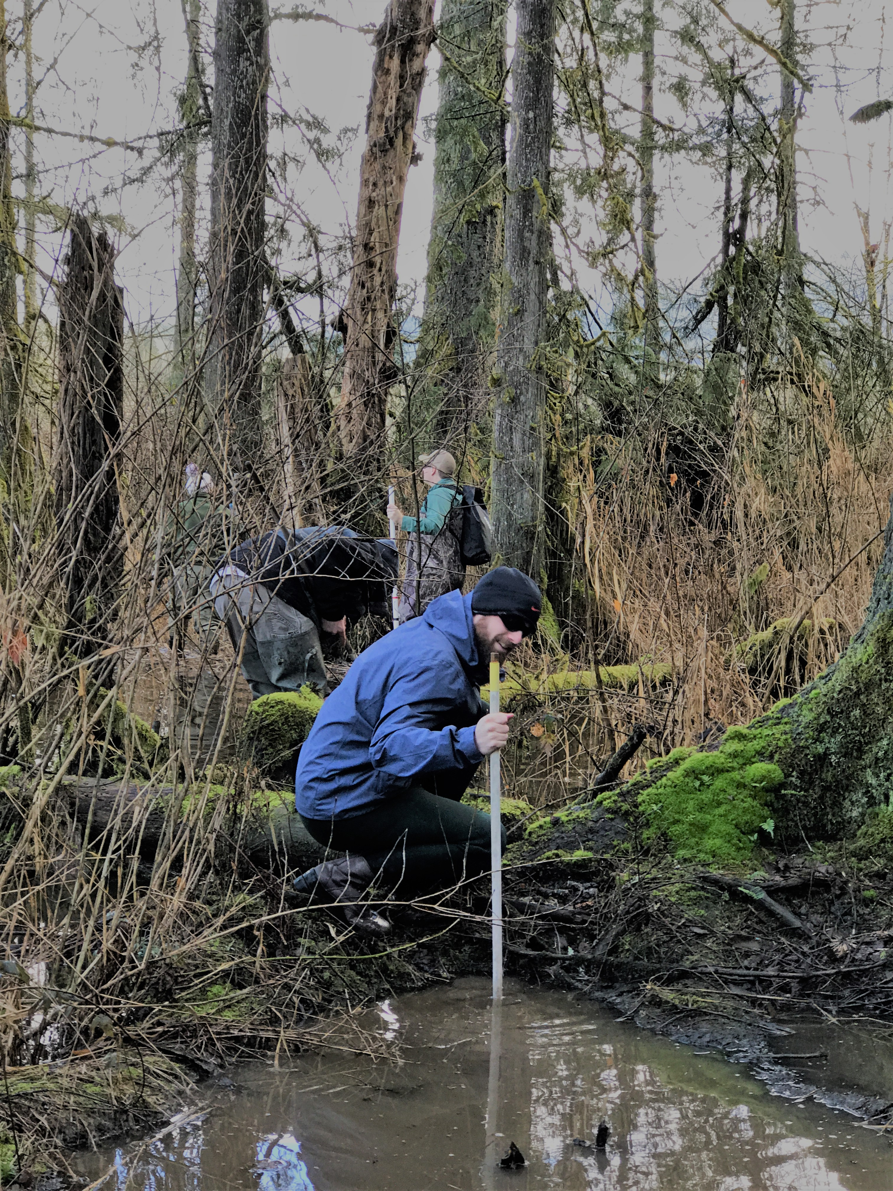 A volunteer measures water quality during amphibian monitoring project at Big Lake Wetlands Conservation Area, March 2018. Photograph credit: Skagit Land Trust staff.