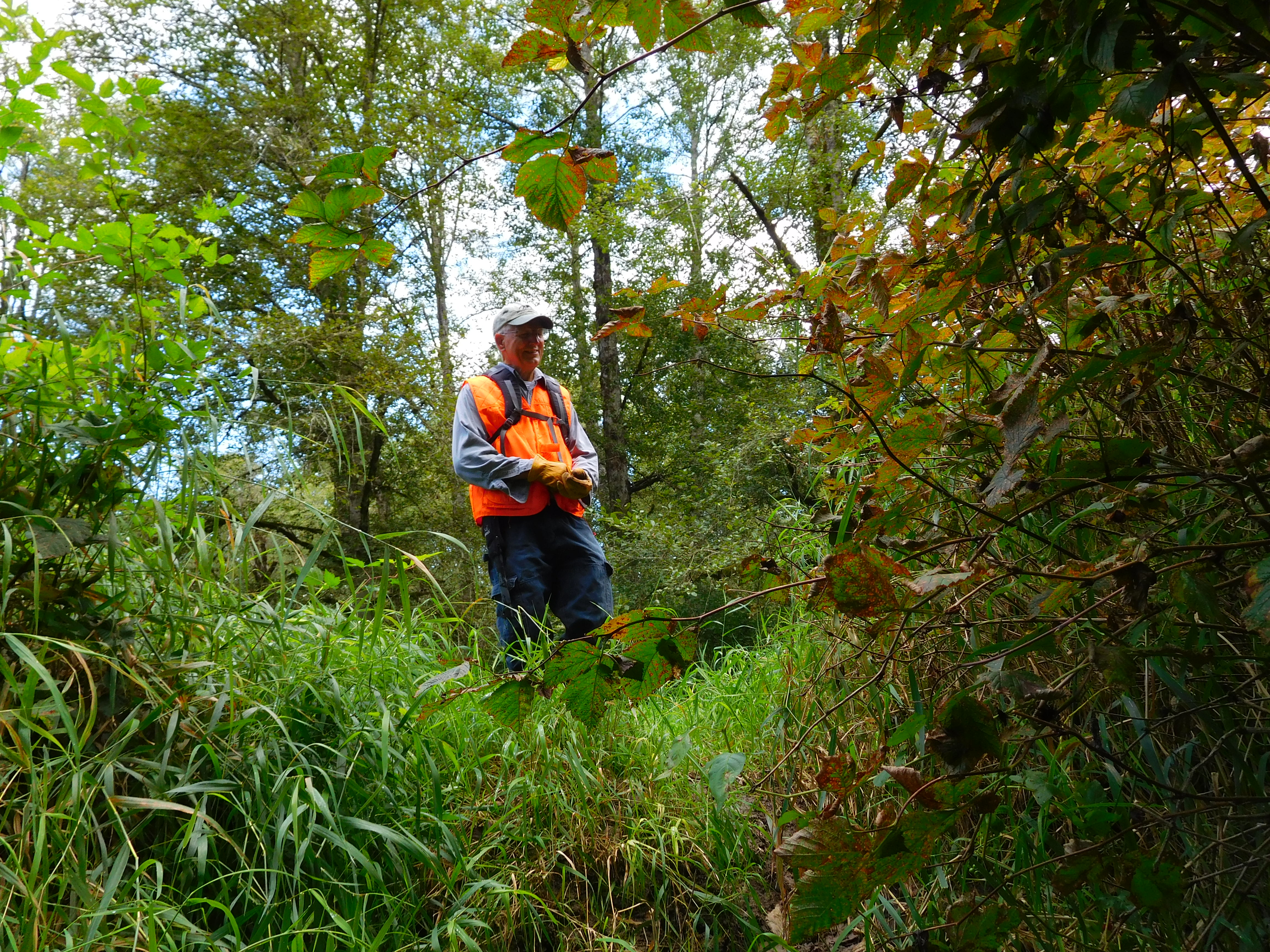 Volunteer land stewards are integral in managing Skagit Land Trust properties. Photograph credit: Skagit Land Trust staff.