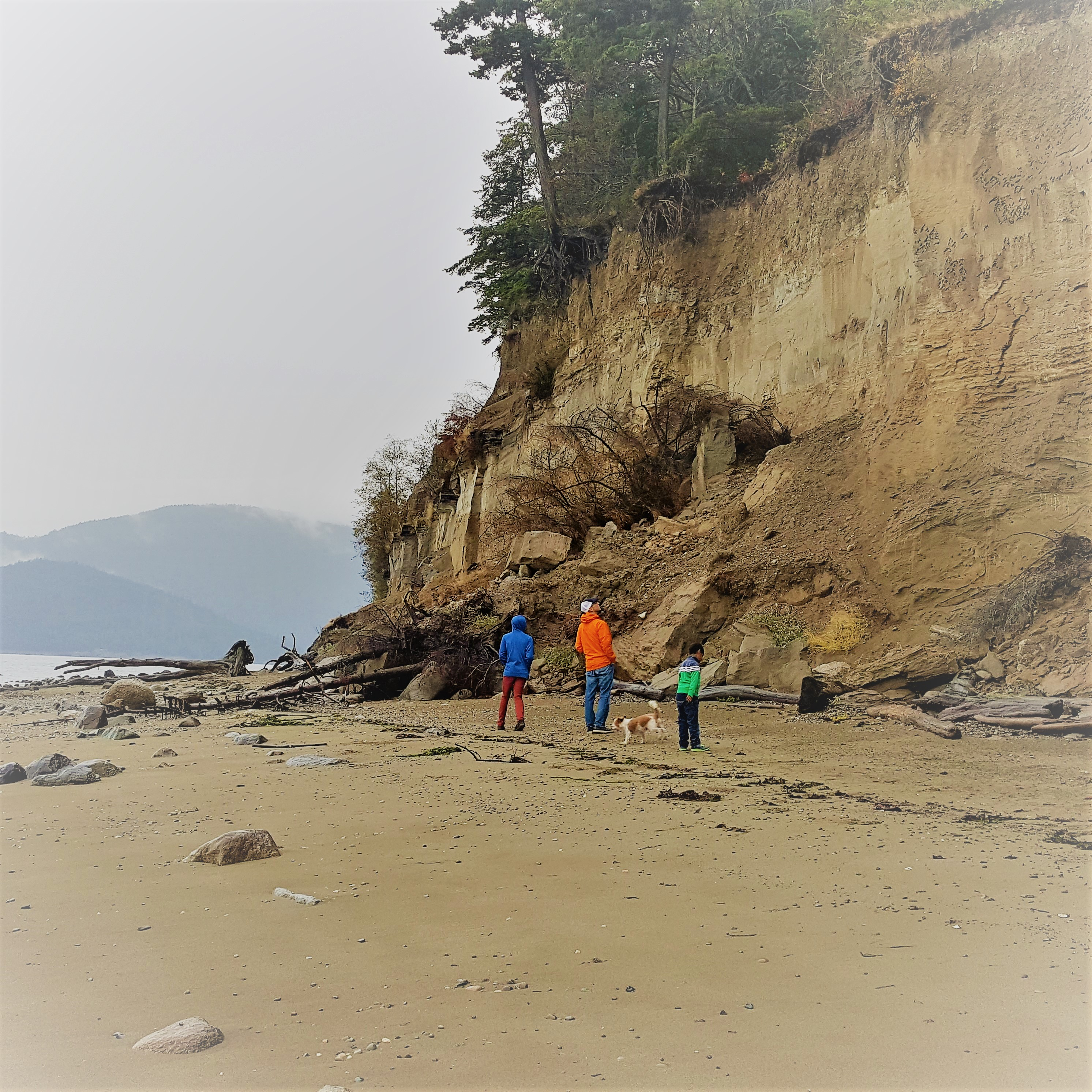 Kelly's Point is a popular location on Guemes Island to walk the beach. Photograph credit: Skagit Land Trust staff.