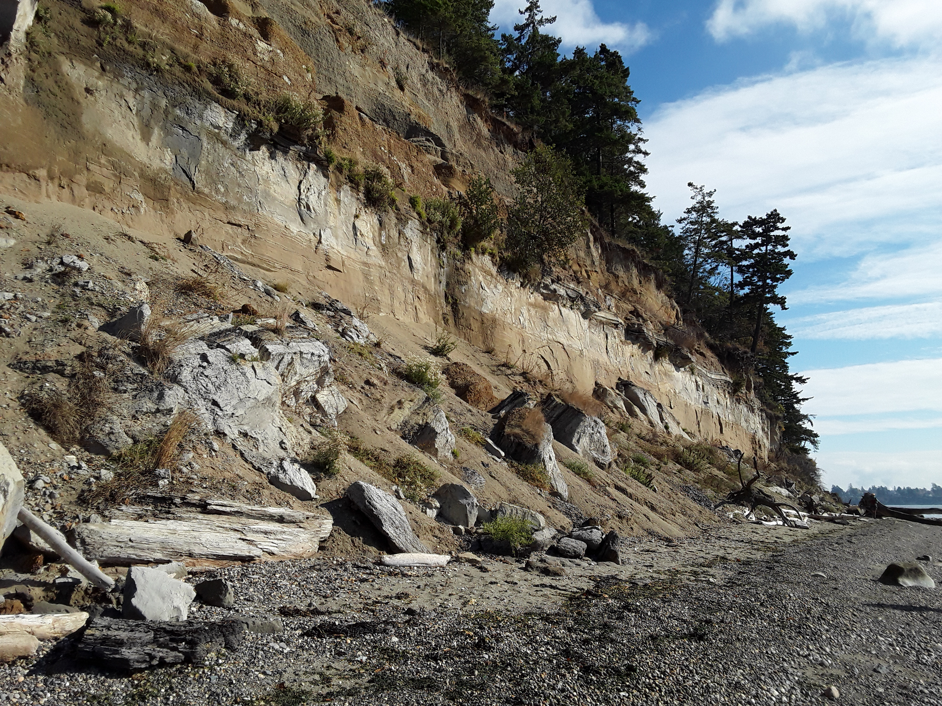 Kelly's Point Conservation Area exposes sediments deposited by glaciers tens of thousands of years old. Photograph credit: Skagit Land Trust staff.