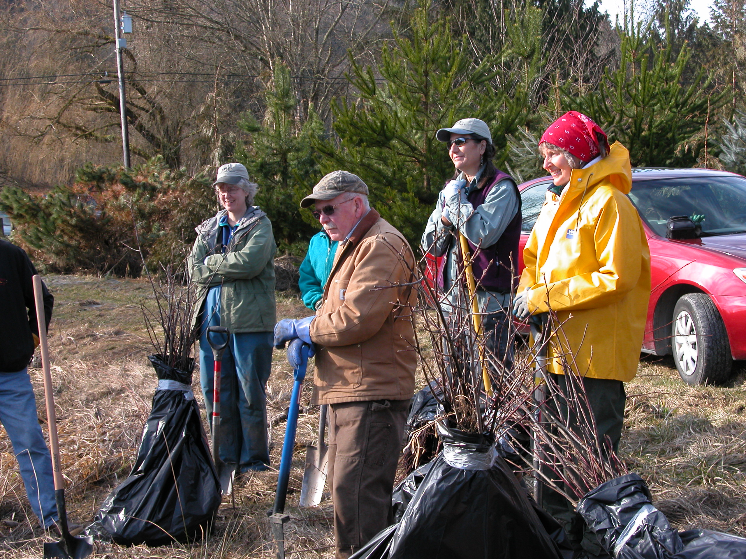 Community members participate in tree planting restoration project at Tope Ryan Conservation Area. Photograph credit: Skagit Land Trust staff.