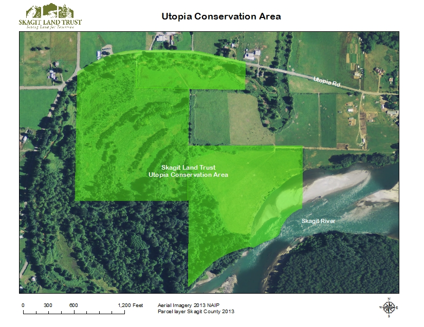 Map of Utopia Conservation Area, created using GIS by Skagit Land Trust staff.