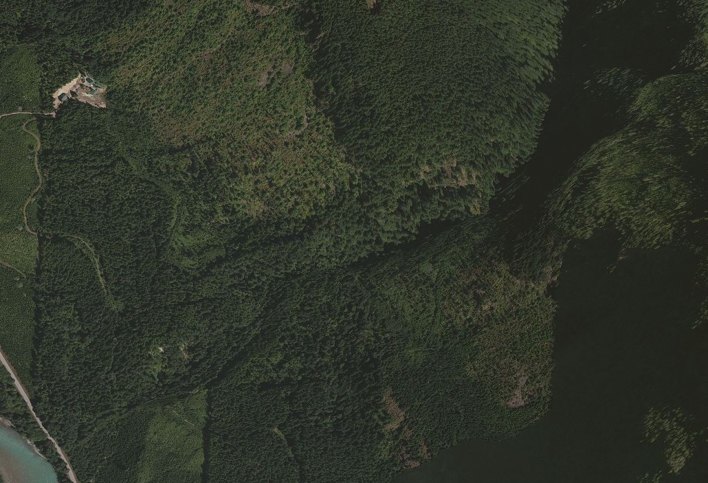 Above: Aerial map of White Creek Conservation Area taken in April 2013. Photograph credit: Unknown.